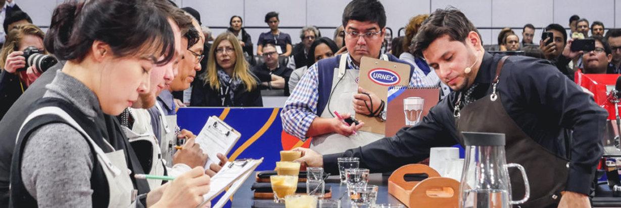 Competencia de Cafe Nacional e Internacional, Entrenamientos para Competencias de Cafe