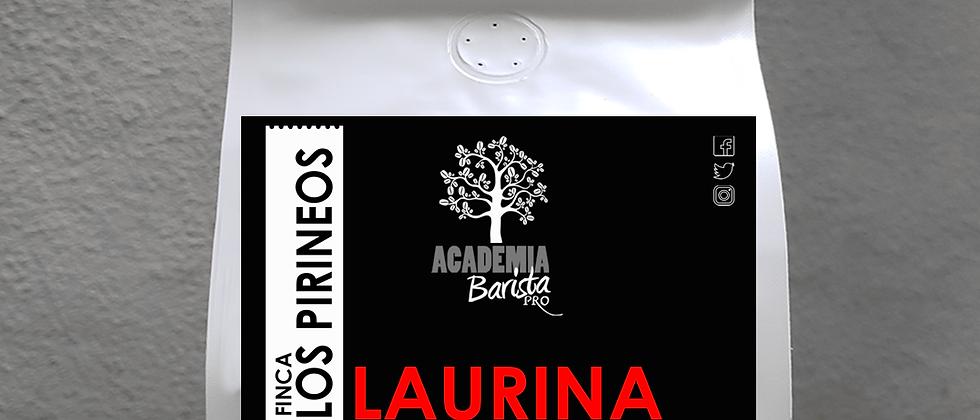 Laurina 12oz