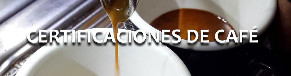 Certificaciones Internacionales de Café, Brewing Skills Fundamentos, Metodos de Preparacion de Café
