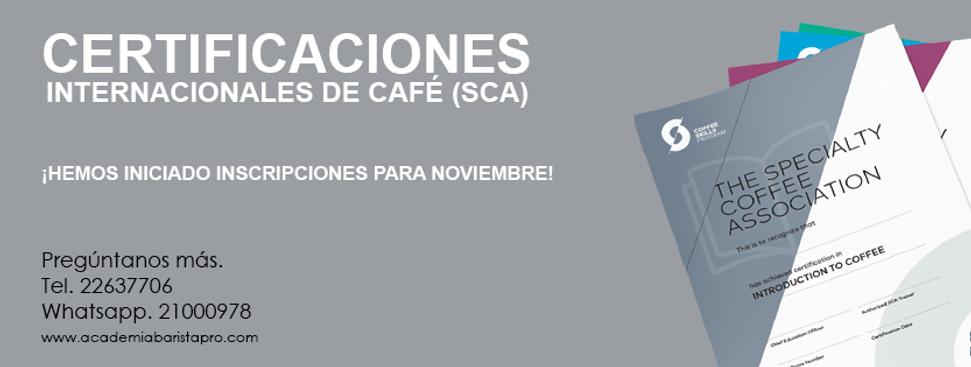 Certificaciones Internacionales de Café en El Salvador de Specialty Coffee Association