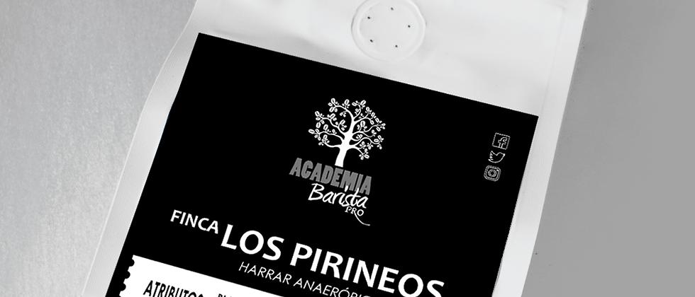 Harrar Anaeróbico Los Pirineos 12oz