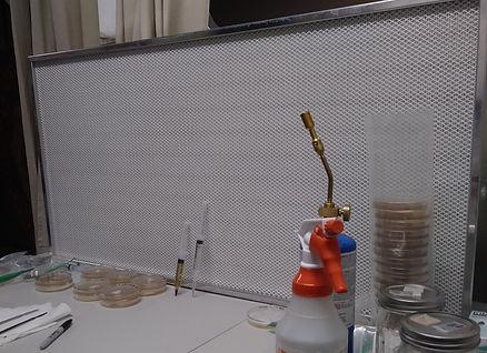 Lab3.jpg