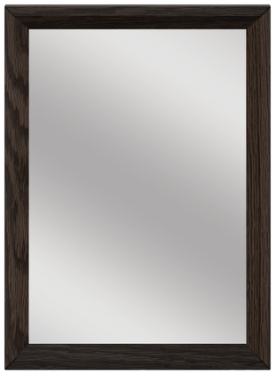Robinson 22-In Mirror