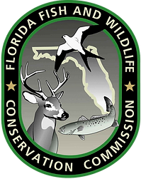 4 fwc-logo BEST.png