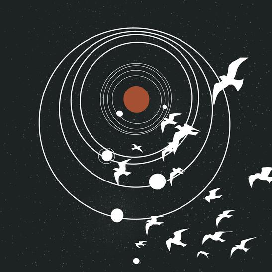 Birdsuniverse_.jpg