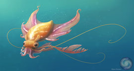Dumbo Squid