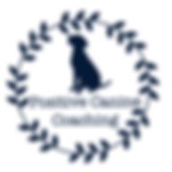Logo_Clear_051A37 Navy.png