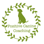 Logo_Clear_779324 - Green.png