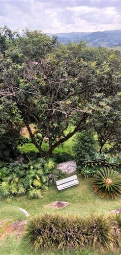 Parte de um grande jardim
