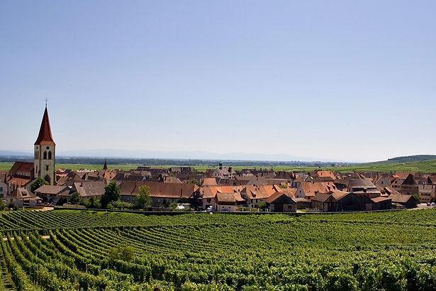 domaine vin alsace
