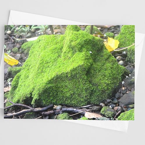 Moss | 1 Card