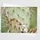 Thumbnail: New Mexico | 5 Card Set