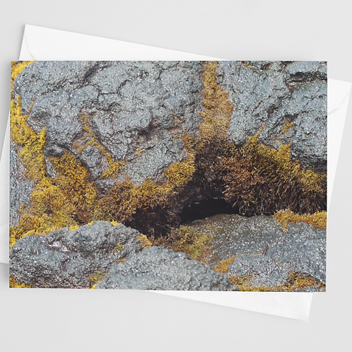Lava Moss | 1 Card