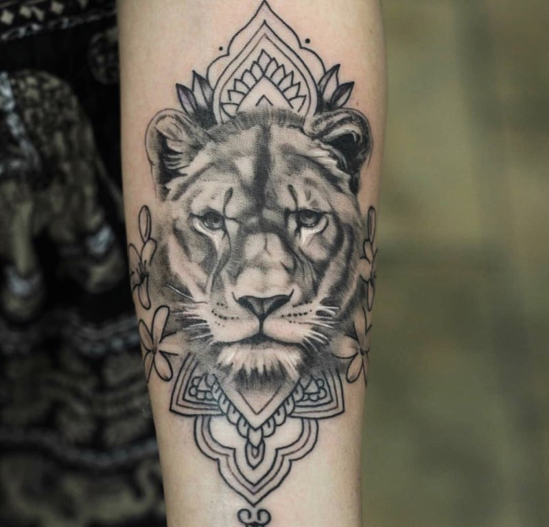 lions tattoo by andrew