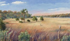Wando Marsh