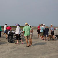 beach walk2.jpg