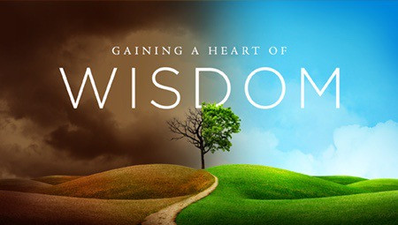 Are Wisdom and Intelligence The Same?