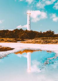 Lighthouse Vision.