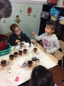 Planting lesson