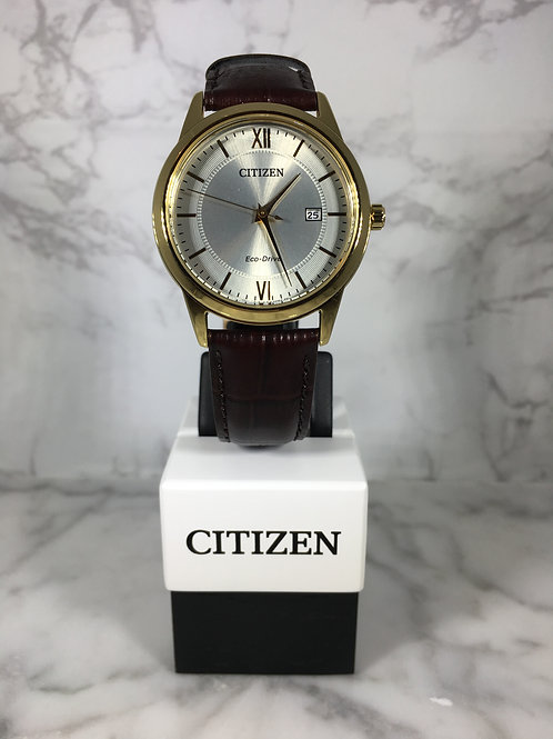Men's Gold Citizen Eco-Drive Leather Strap Watch