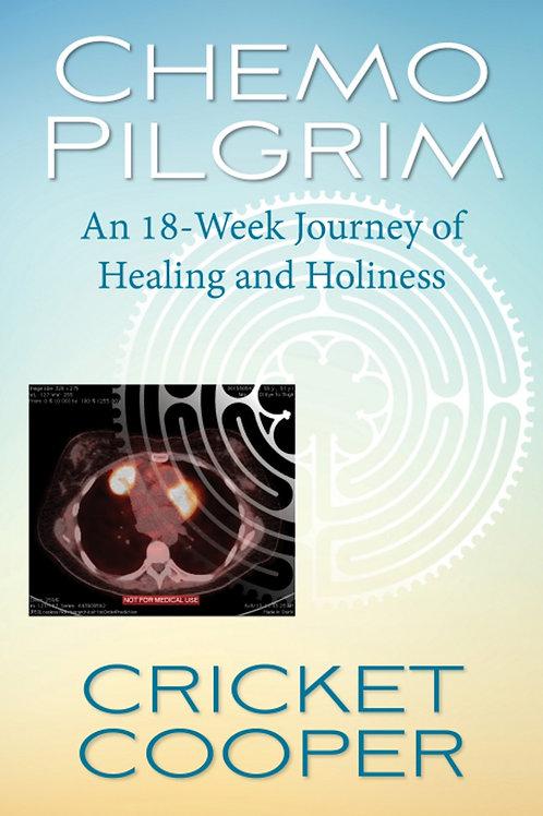 Chemo Pilgrim An 18-Week Journey of Healing