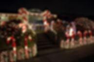 Christmas-Light-Tour.jpg