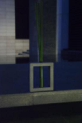 Quado, a unique concrete creation