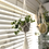 Thumbnail: Macrame Plant Hanger