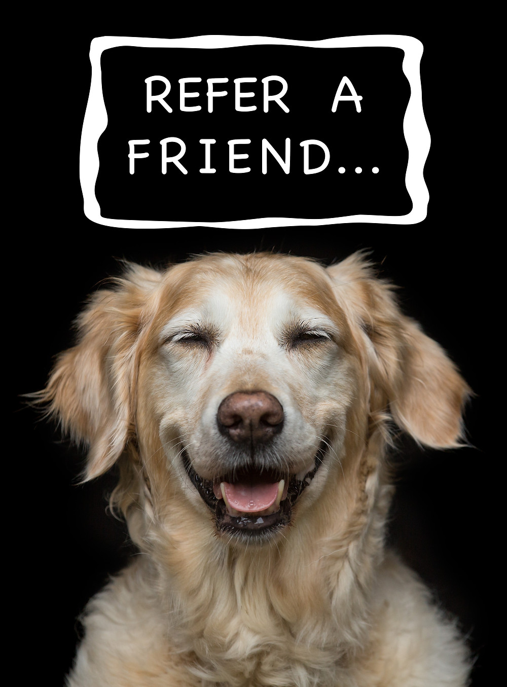 "Have you heard about our new ""Refer a Friend Scheme"" ...?  ​  No !!  ​  Well as a thank you to all our amazing customers, for every friend you refer to us who goes on to book a session, we will give you a stunning 16 x 12"" Art Print of your choice.   ​  All you have to do is to ask your friend to let us know YOU referred them and then wait for your THANK YOU email to arrive."