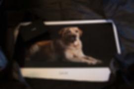 Caroline Dell Photography boxed layflat photobook