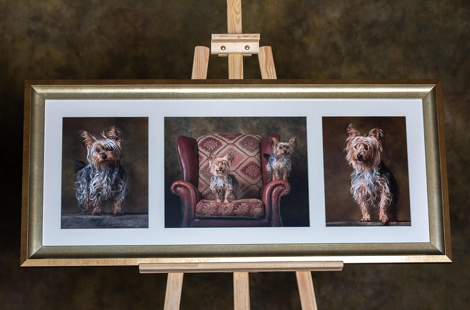 Caroline Dell Photography supply traditional framed prints.
