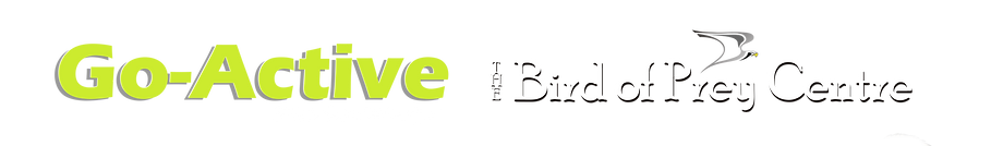 Website logo 2020 rev.png