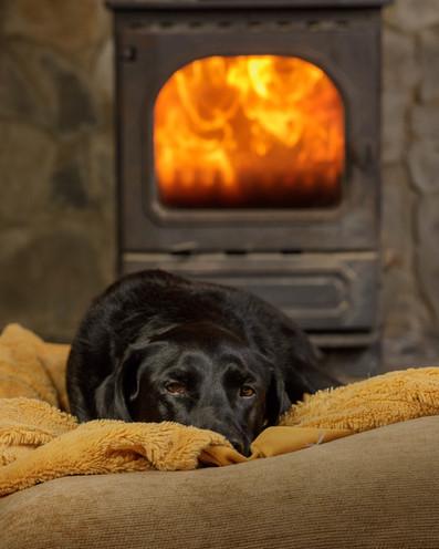 Ruby Fireside