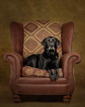 Ruby Chair.jpg