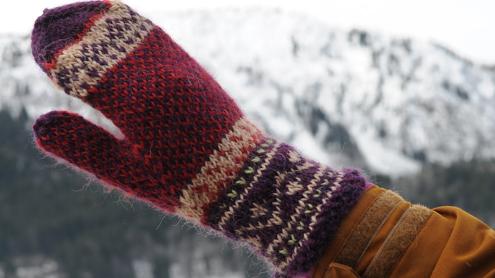 Knitting pack Sigurbjorg mittens