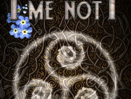 Forget Me Not - Anca Antoci - blog tour