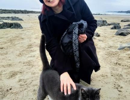 Cat on a Beach