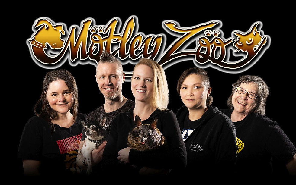 MZ-BoardOfDirectors-GroupShot2021.jpg