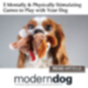 Dog Games.jpg