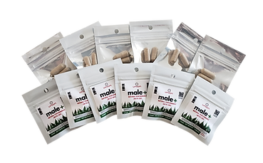 male+ bulk sample packs (transparent).pn