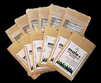 male+ bulk resale packs (transparent).pn