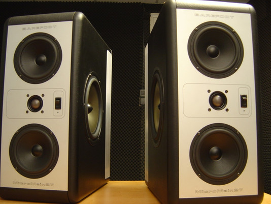 Native Sound Purchased New Monitors For Stellar Mixing At Our St. Louis Studio A