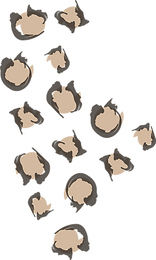cheetahprint2.png