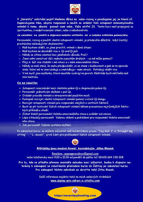 PEI SEE - Online Workshop_ESP Nov 2020 C