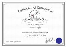 Igoe Dog Walking Behaviourand Training Qualifications
