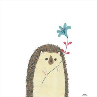 [Millim]Zoo_hedgehog_1000.jpg