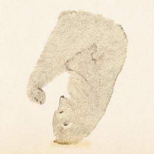 [Yoanna]bear.jpg