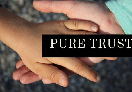 Pure Trust