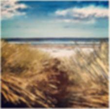 path to the sea.jpg