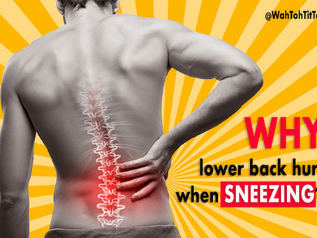 Why does your Lower Back HURT when sneezing ?